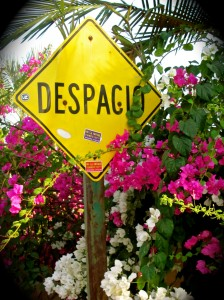 Despacio means slow in Spanish. Smelling the flowers is implied.